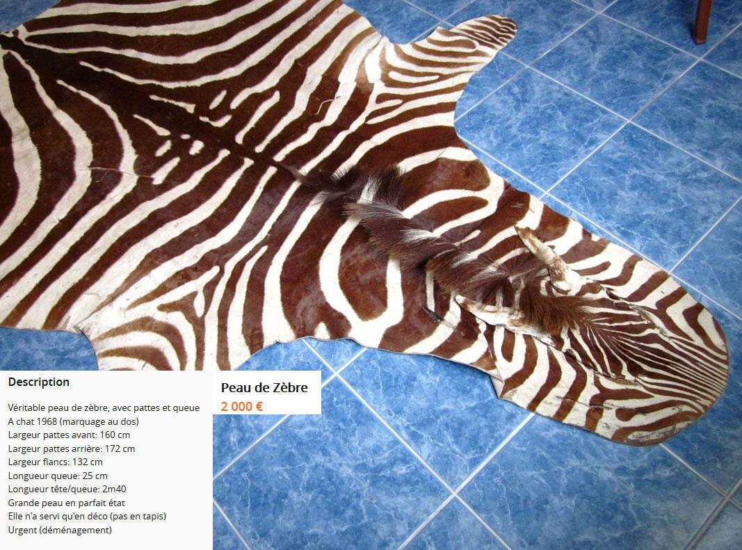 Tapete de pele de zebra