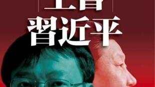 冯胜平的《上书习近平》