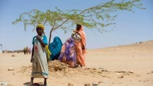 Des femmes réfugiées soudanaises se reposent à l'ombre d'un arbre au camp de réfugiés d'Iridimi, dans l'est du Tchad. (Photo d'archives 2014)