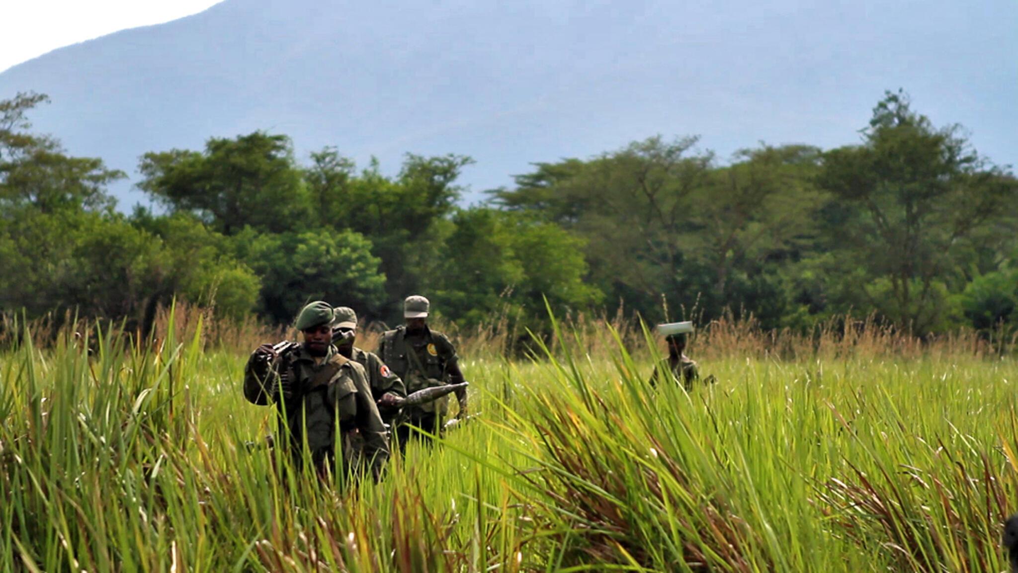 Plus de 200 ecogardes aurait perdu la vie dans les Virunga en l'espace d'une décennie.