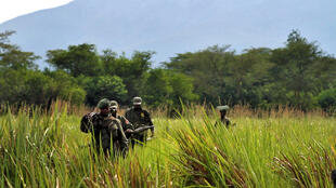 Des éco-gardes du parc de Virunga en patrouille. (image d'illustration)