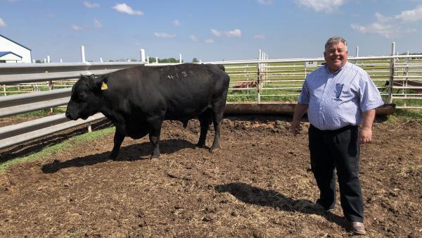 Scott Blubaugh, président de l'Oklahoma Farmers Union, devant l'un de ses taureaux, dans son ranch de Tonkawa.