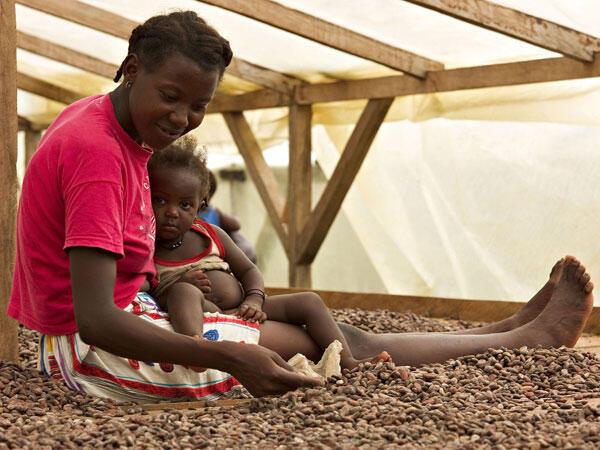 Séchage du Cacao, Sao Tomé.
