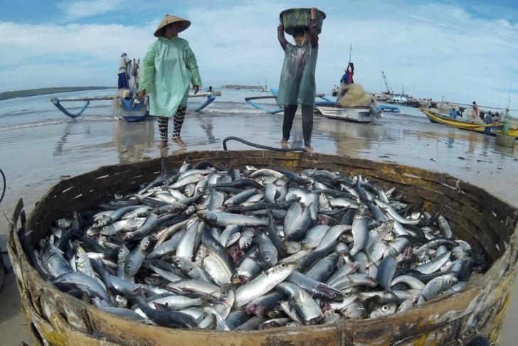 Retour de pêche dans l'île indonésienne de Bali.