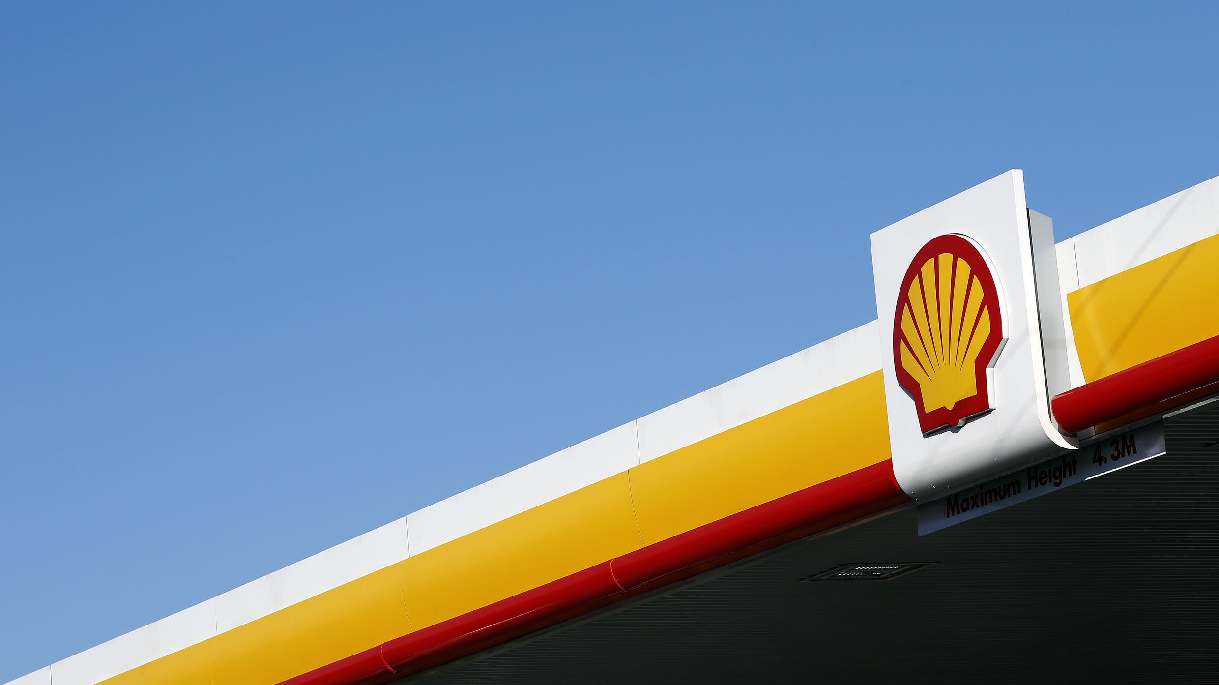 Activists say Shell's plans to plant trees to offset carbon emissions are unrealistic