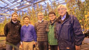 """L'équipe de """"Quinoa Project"""" dans les serres de l'Université de Wageningen."""