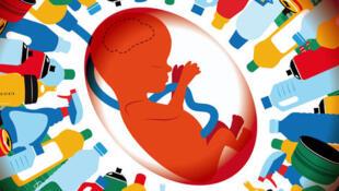 Theo một nghiên cứu, thai nhi phơi nhiễm chất phtalate sẽ bị giảm chỉ số thông minh đến 7 điểm (Courtesy of magazine-greenlife)