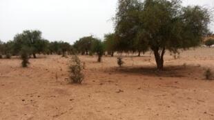 Wasu daga cikin yankunan dake fama da rashin tsaro a yankin Tillabery daf da kan iyaka da Burkina Faso