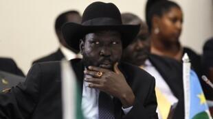 南苏丹总统萨尔瓦•基尔在内罗毕2014年5月11日