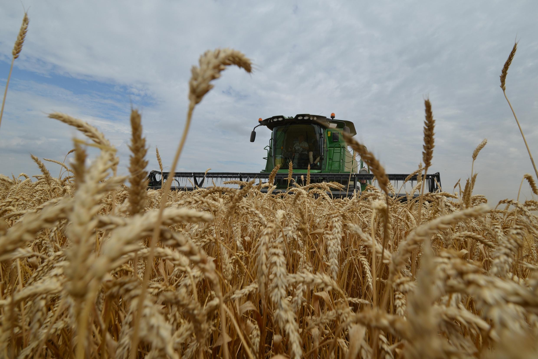 Ngày 26/04/2020, bộ trưởng Nông Nghiệp Nga - nước đứng đầu thế giới về xuất khẩu lúa mì -  thông báo sẽ tạm ngưng việc xuất khẩu nhiều loại ngũ cốc.
