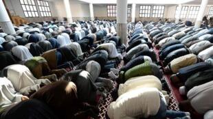 在Frejus 清真寺祈禱的法國穆斯林