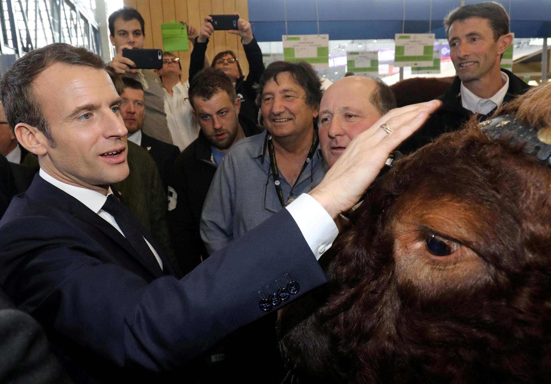"French President Emmanuel Macron meets ""Joker"" the Bull as he visits the International Agriculture Fair (Salon de l'Agriculture) at the Porte de Versailles exhibition centre in Paris, France, February 23, 2019."