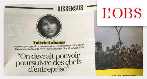 Matéria do jornal L'Obs com a jurista Valérie Cabanes pede condenação judicial aos dirigentes de empresas.