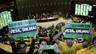 Ambientalistas protestan contra la adopción de la reforma de la ley forestal, durante el voto en la Cámara de Diputados, este 25 de abril de 2012 en Brasilia.