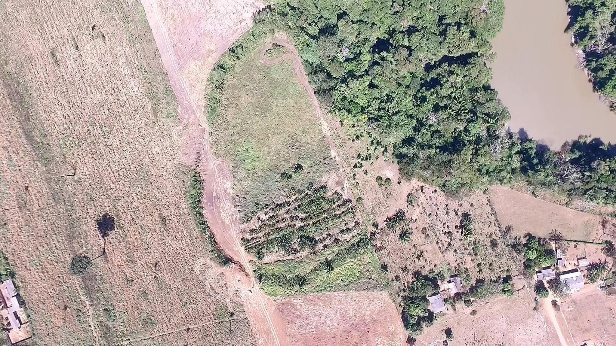 Foto de satélite mostra contornos de aldeia que data de 1450, na Amazônia.