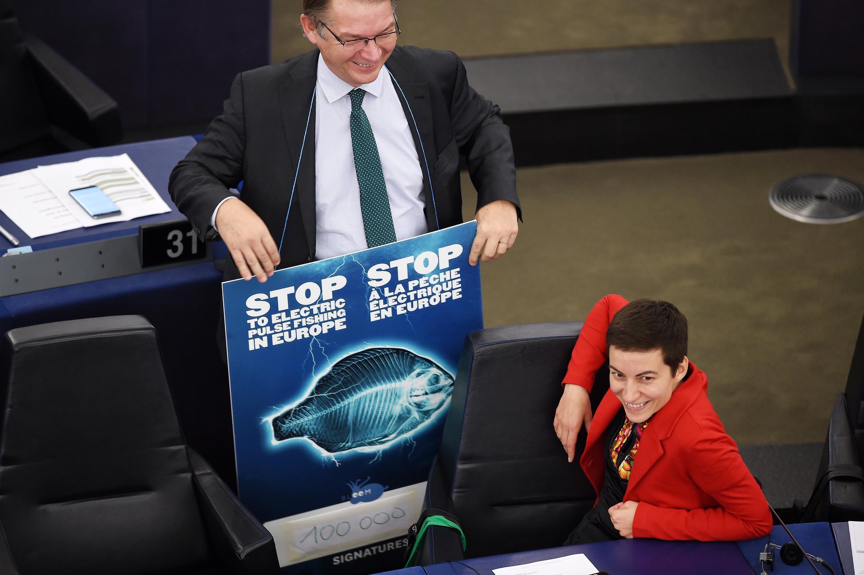 O deputado Philippe Lamberts levou um cartaz pedindo o fim da pesca elétrica, ao lado da copresidente alemã do grupo parlamentar dos Verdes, Ska Keller, durante sessão de votação no Parlamento Europeu em Estrasburgo, em 16 de janeiro.