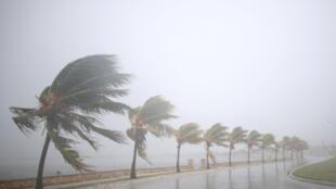 بادهای ناشی از طوفان ایرما به سواحل کوبا رسید