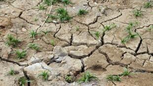 Así queda la tierra luego de una sequía.