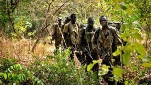 Une patrouille l'armée ougandaise sur les traces des rebelles de la LRA en avril 2012.