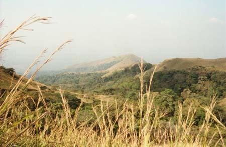 Le Mont-Nimba en Guinée regorge de richesses, dont une partie est classée au patrimoine mondial de l'Unesco.