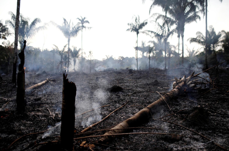 В субботу, 1 августа, Национальный институт космических исследований Бразилии опубликовал спутниковые фотографии лесных пожаров в стране за прошедший месяц.