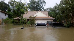 Thành phố Houston, Texas, Mỹ : nước dâng cao gần ngập tới mui xe. Ảnh ngày 28/08/2017.
