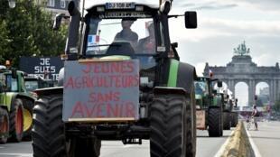 Quelque 7 000 agriculteurs ont manifesté, le 7 septembre 2015, à Bruxelles.