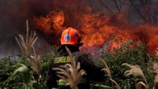 Un pompier lutte contre un feu de forêt à San Carlos, dans le centre du Chili, le 28 janvier 2017.