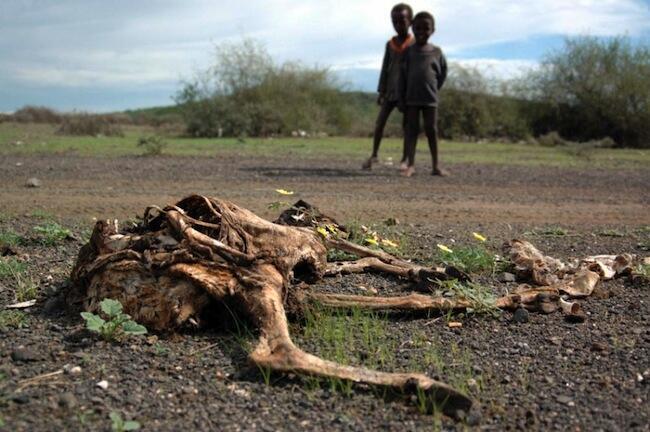Moja ya maeneo barani Afrika yaliyoathirika na ukame kutokana na mabadiliko ya tabia nchi