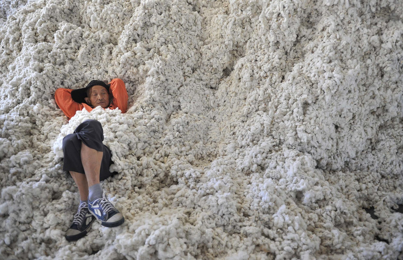 L'Afrique vendait les trois quarts de son coton en Chine en 2013.
