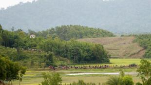 Đoàn người Rohingya vượt biên giới sang Banladesh trốn chạy xung đột bạo lực ngày 26/08/2017.