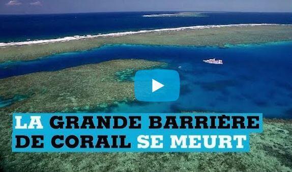 在澳大利亚北部的大堡礁总面积为34万8千平方公里