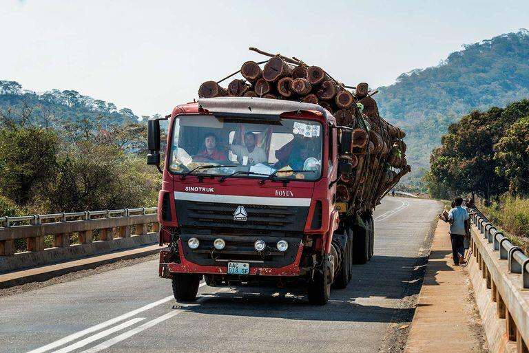 法國世界報記者拍攝的中國人在莫桑比克走私木材的圖片,2017年4月。