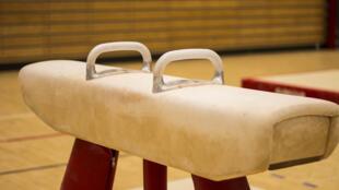 La Fédération française de gymnastique travaille en partenariat avec l'association Colosse aux pieds d'argile. Une structure qui sensibilise les clubs aux violences sexuelles dans le sport.