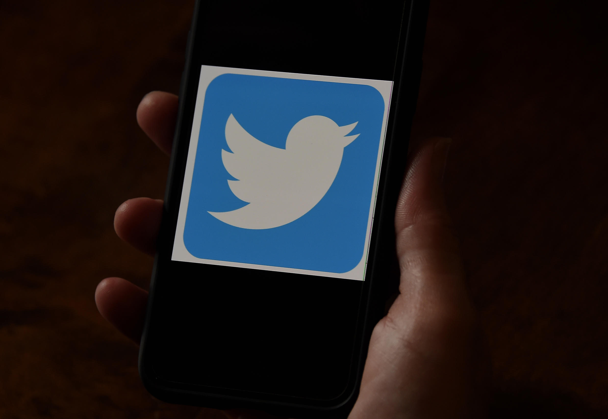 Twitter accounts with names playing on Trump themes and seeking to amplify Donald Trump's website posts have been taken offline, according to the platform