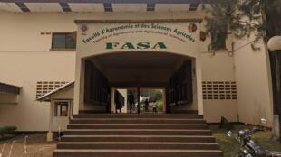 Cameroun - La Faculté d'Agronomie et des Sciences agricoles - FASA de Dschang - Le coq chante