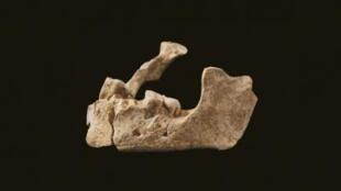 Una mandíbula humana encontrada en la calle Henry-Farman de París.