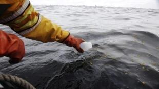 Ativista do Greenpeace coleta amostra na zona onde plataforma da Total registra vazamento de gás,  na costa da Escócia.
