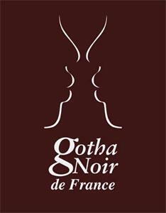 «Le Gotha Noir de France»  est publié chez Efficience Edition