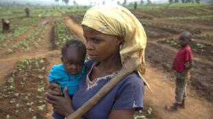 Une jeune maman et son bébé, dans un champ cultivé par des personnes déplacées à Tshikapa, dans le Kasaï (image d'illustration).