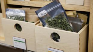 Loja de Oakland oferece diversos tipos de cannabis, no primeiro dia da liberalização do uso recreativo da maconha na Califórnia.