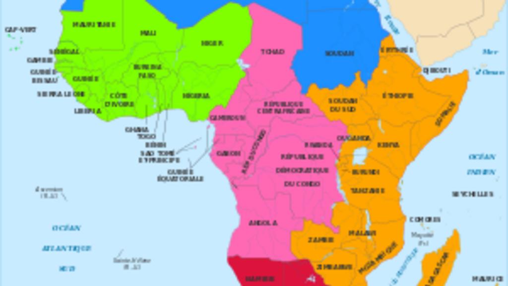 L'aventure de la démocratie en Afrique: histoire et état des lieux