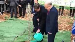 Bolsonaro plantou uma muda de oliveira no Museu do Holocausto Yad Vashem, em Jerusalém, no dia 2 de abril.