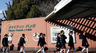 Des enfants avancent vers le zoo Ueno, à Tokyo, juin 2017.