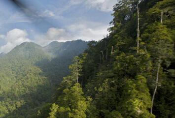 Một vùng rừng núi hiểm trở tại đảo Papua New Guinea.