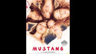 Affiche du film «Mustang» de Deniz Gamze Ergüven, présenté à la quinzaine des réalisateurs de Cannes