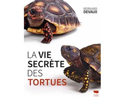 """""""La vie secrète des tortues"""", de Bernard Devaux, paru chez Delachaux et Niestlé."""