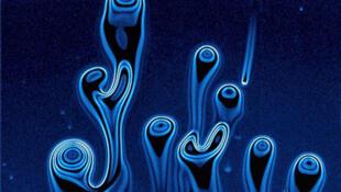 Evolution de motifs formés par une substance tensioactive (comme le savon) dans une fine couche de liquide.