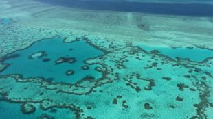 Vista aérea de la Gran Barrera de coral, en Australia, el 20 de noviembre de 2014