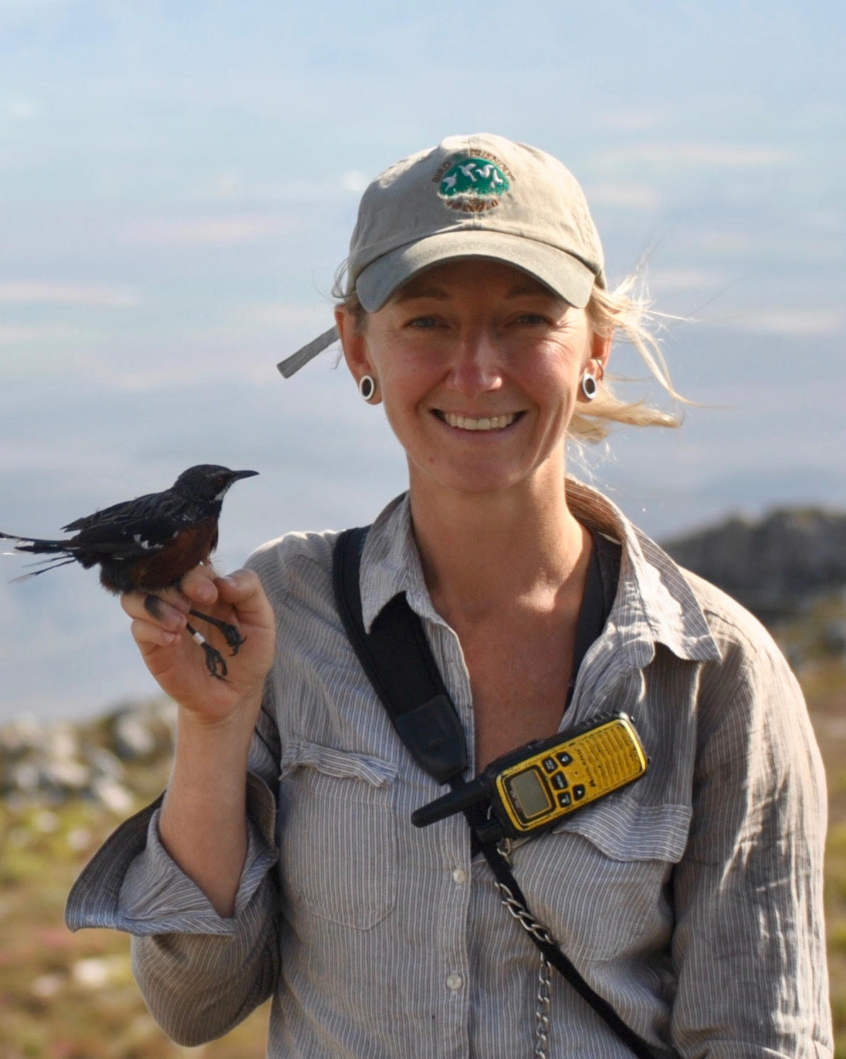 Scientist Krista Oswald with one of her research subjects, a Cape rock-jumper captured and ringed for a study on population genetics in the Western Cape.